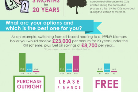 How Much Could You Earn From Commercial Biomass? Infographic
