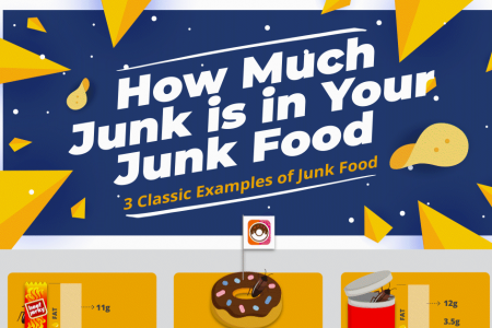 How Much Junk is in Your Junk Food? Infographic