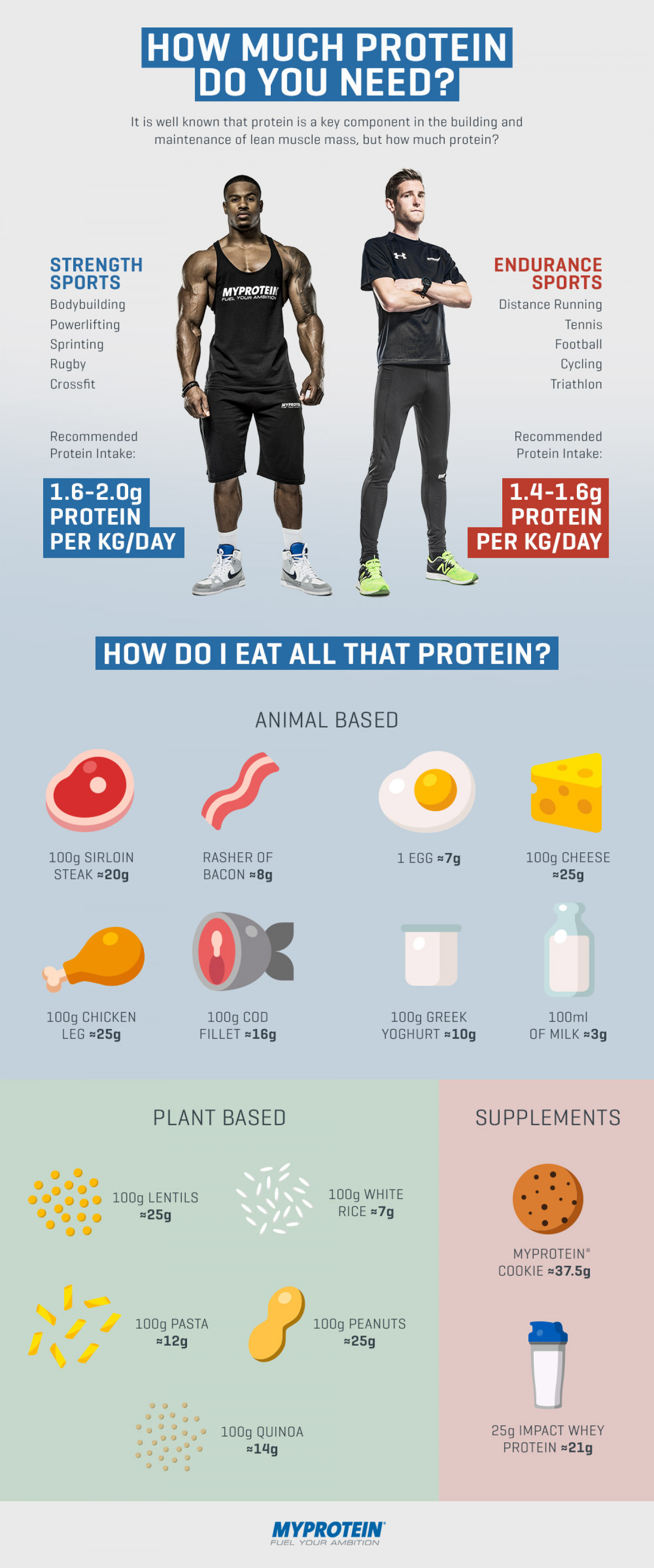 How Much Protein Do You Need on Your Weight Loss Diet Plan