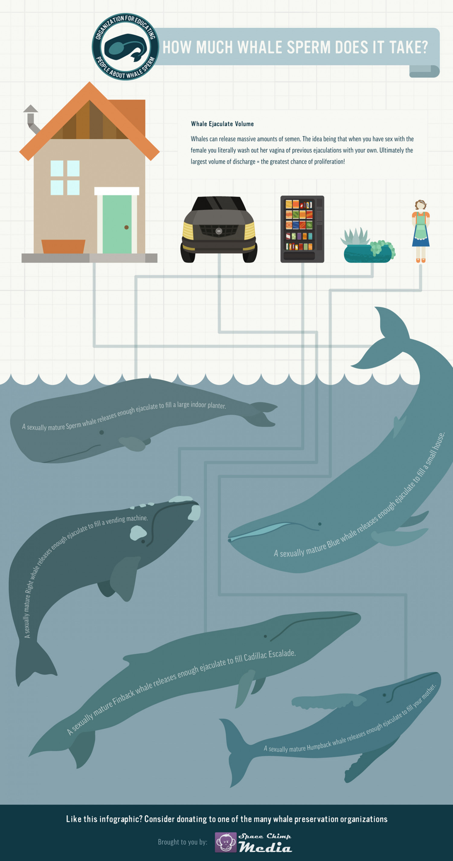How Much Whale Sperm Does It Take? Infographic
