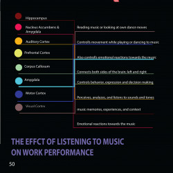 How music affects your brain   Visual.ly