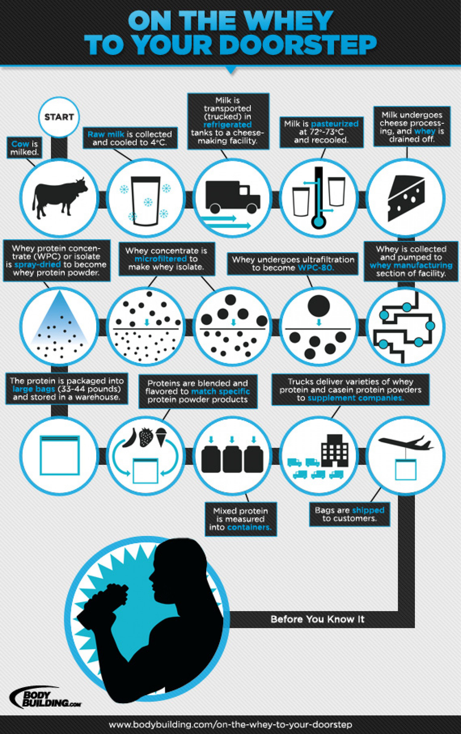 How Protein Powder Is Made Infographic