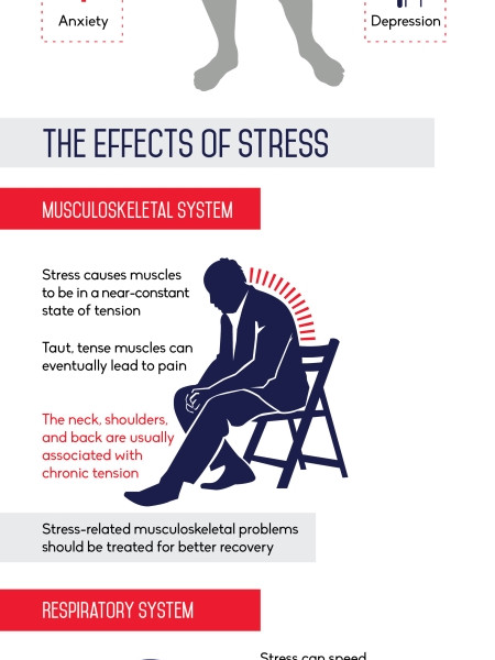 How Stress Affects the Body Infographic