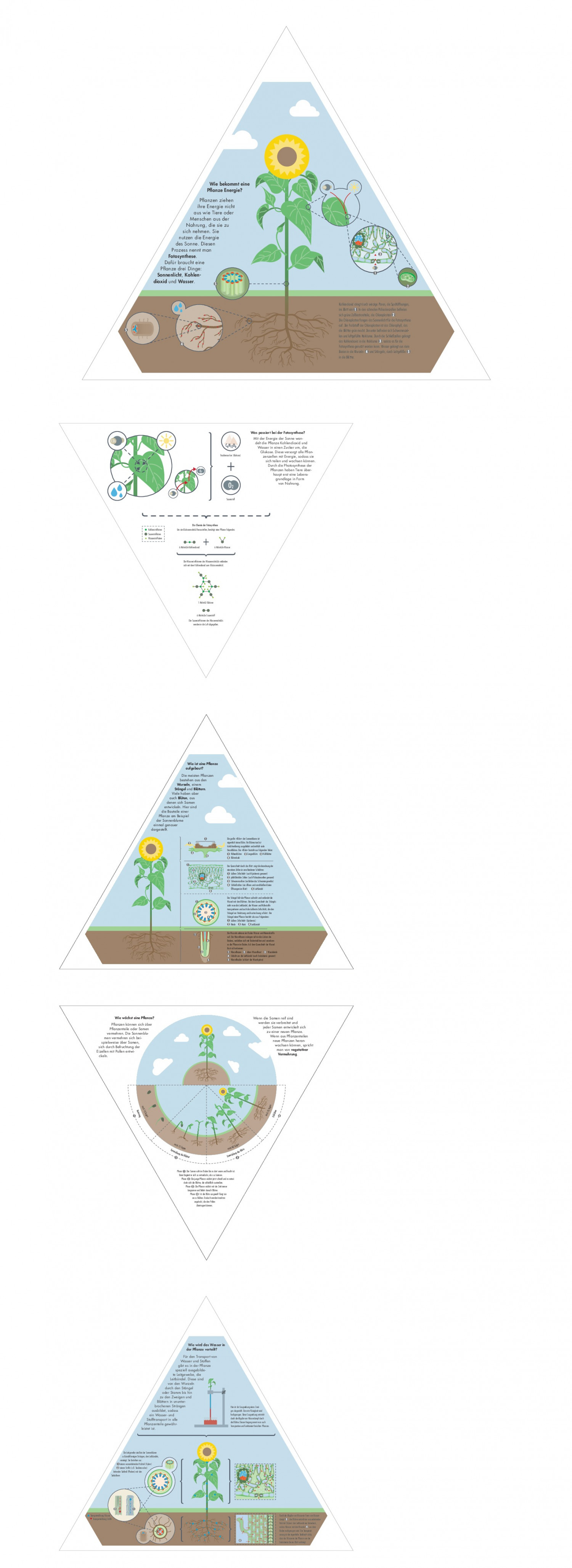 How the world works Infographic