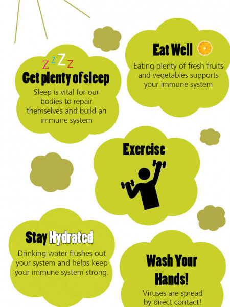 How to Avoid the Flu Infographic