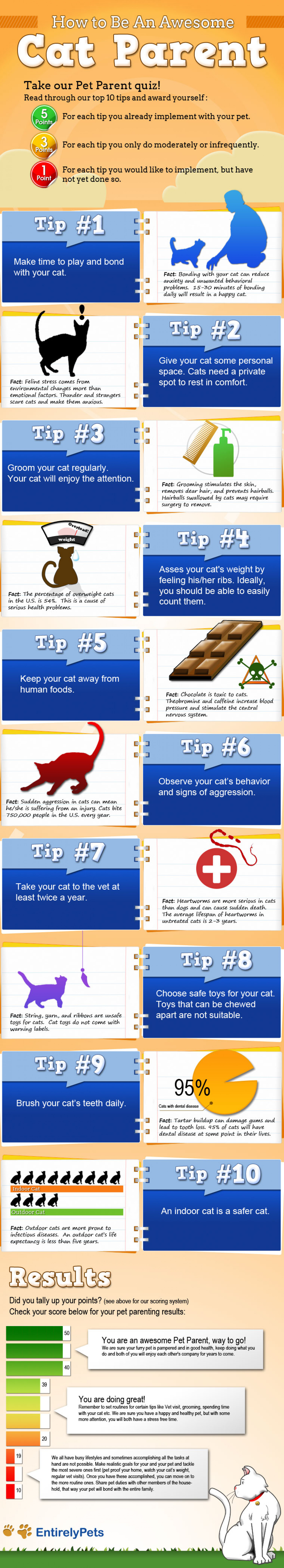 How to Be An Awesome Cat Parent Infographic