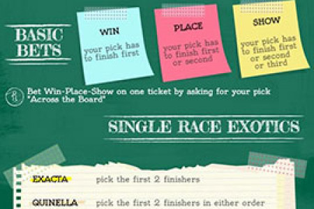 How to Bet on Horse Racing Infographic
