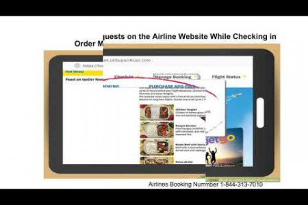 How to Check Flight Reservations | 1-844-313-7010 | Airlines Booking Number Infographic
