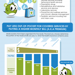 How to Choose a Health Insurance Plan | Visual.ly