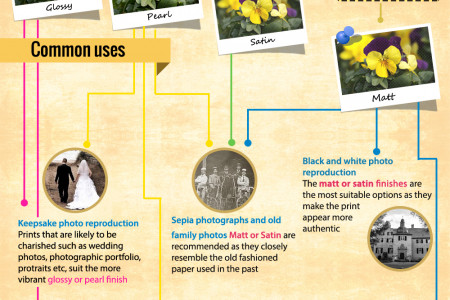 How To Choose Photographic Paper Finish Infographic Infographic