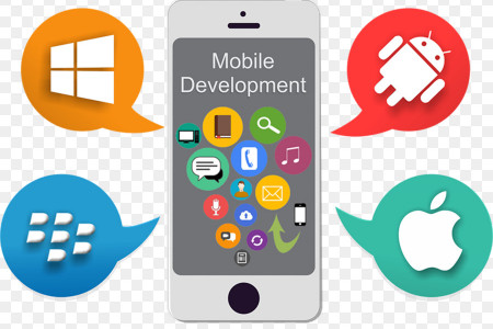 How To Choose The Best Mobile App Development Platform? Infographic