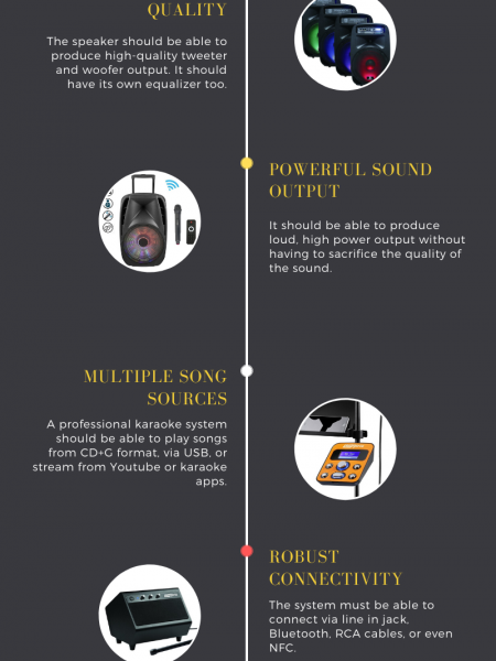 How to Choose The Best Professional Karaoke Machine Infographic