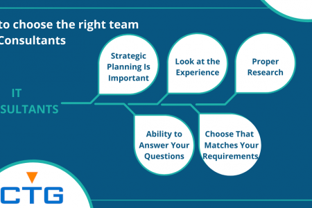 How to Choose the Right Team of IT Consultants? Infographic