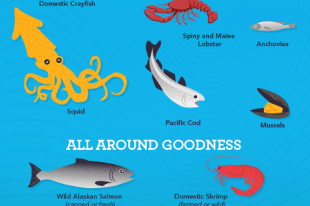 How To Choose The Safest Seafood Infographic