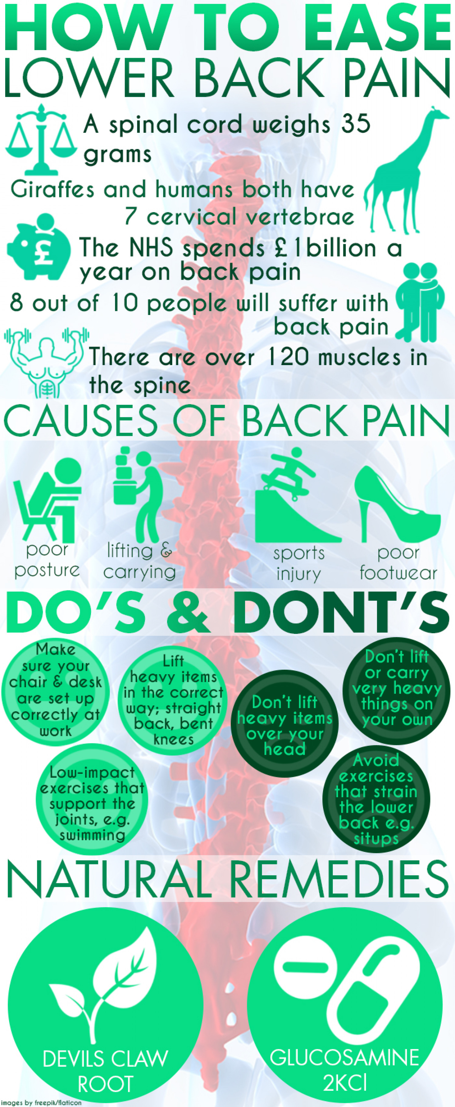 How To Ease Lower Back Pain Infographic