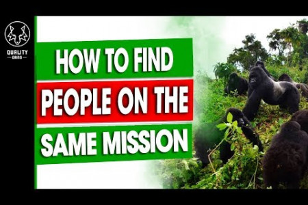How To Find (Vegan) People On The Same Mission As You - Premium Content Infographic