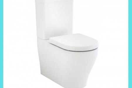 How To Fix A Leaking Caroma Dual Flush Toilet Cistern? Infographic