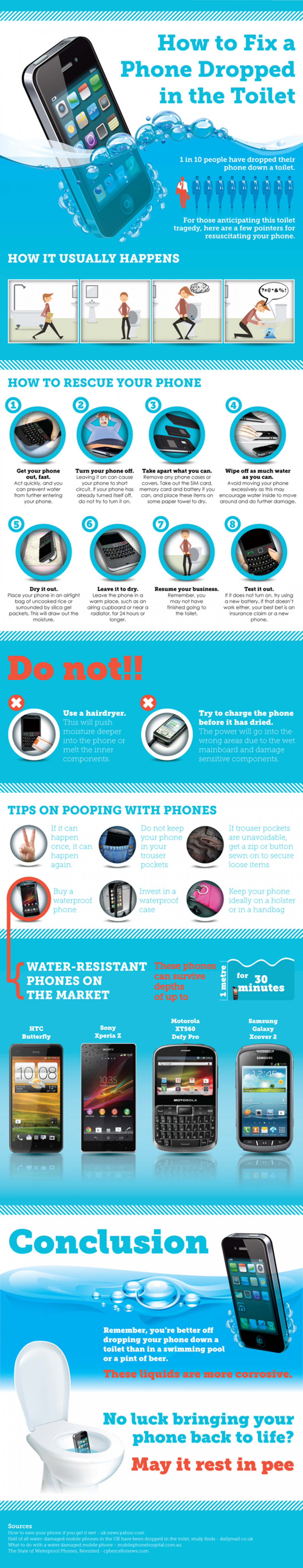 How to Fix a Phone Dropped in the Toilet Infographic