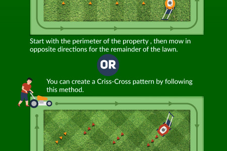 How to get beautiful stripes in your lawn Infographic
