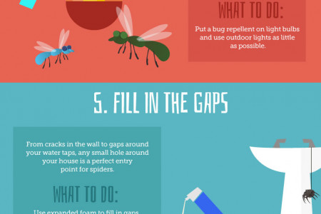 How to Get Rid of Spiders in Your Home  Infographic