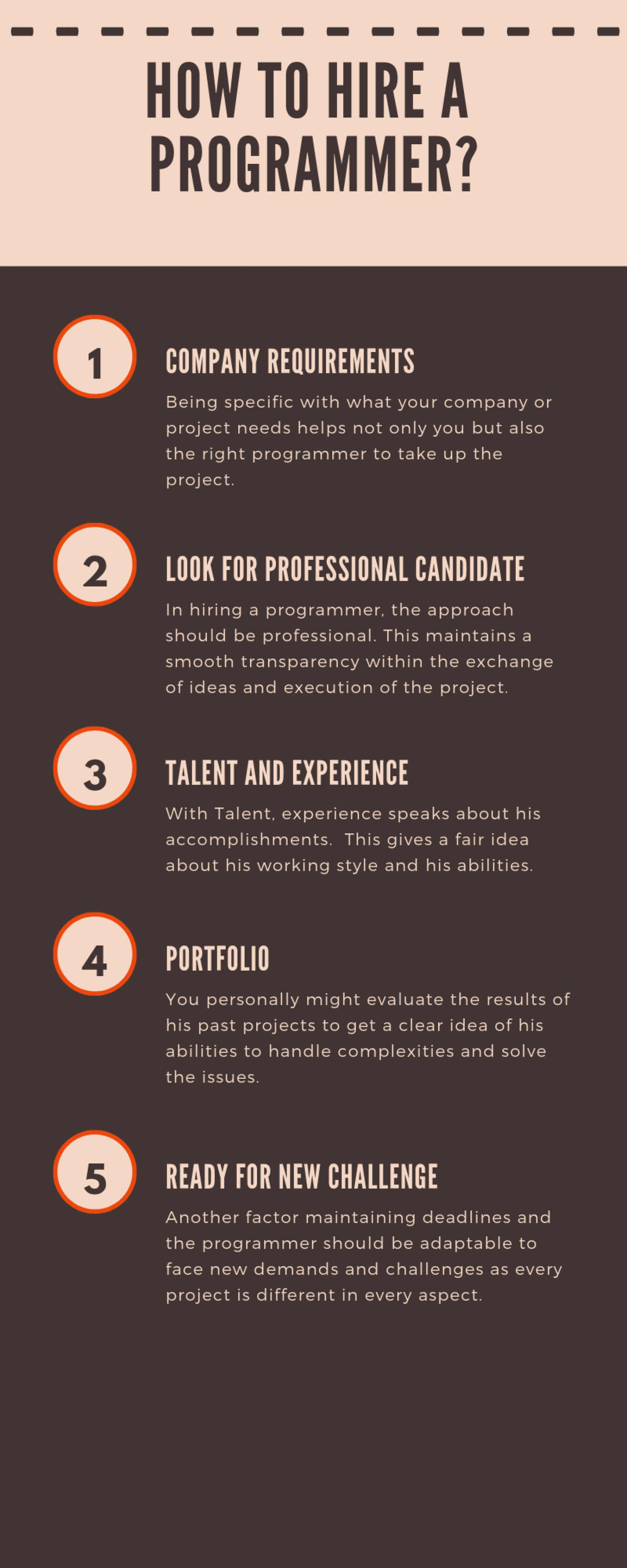 How To Hire A Programmer?  Infographic