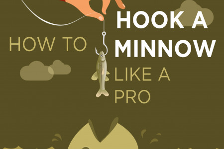 How to hook a minnow Infographic