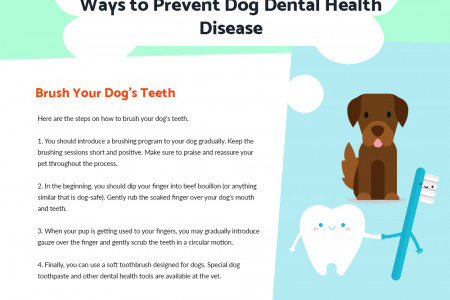 How to Keep Your Dog's Teeth Healthy Infographic