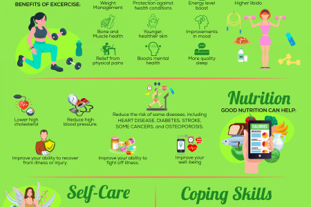 How to maintain a healthy lifestyle Infographic