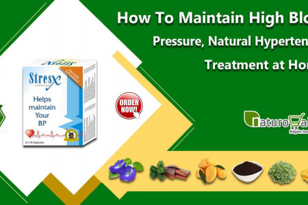How to Maintain High Blood Pressure, Natural Hypertension Treatment at Home? Infographic