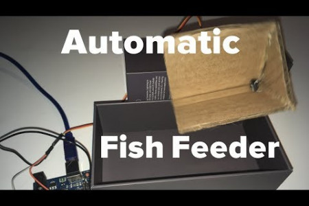 How To Make An Automatic Fish Feeder!  Infographic
