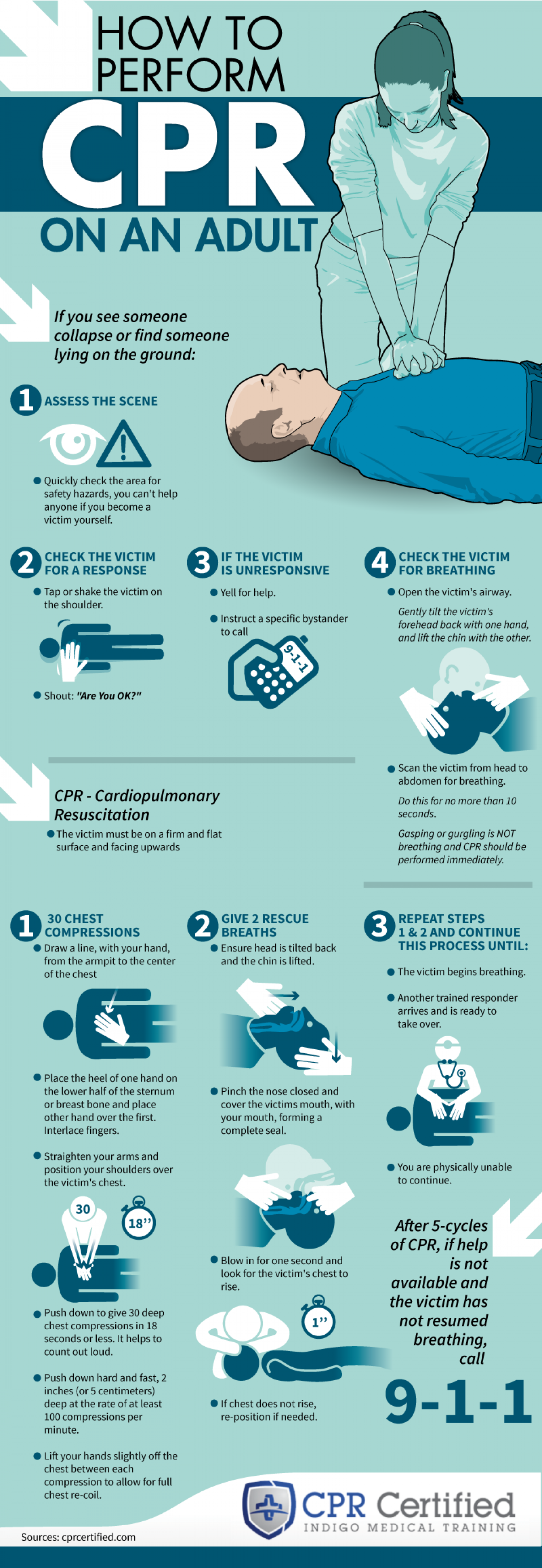 How to Perform CPR on an Adult Infographic
