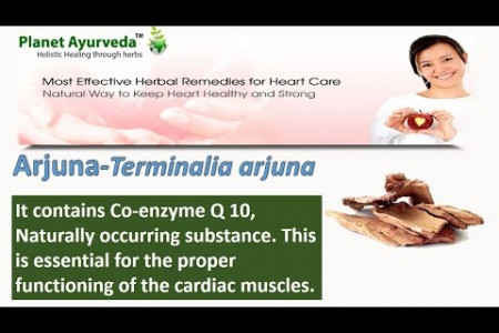 How to Prevent Heart Disease in Ayurveda - Cardio Care Herbal Remedies Infographic