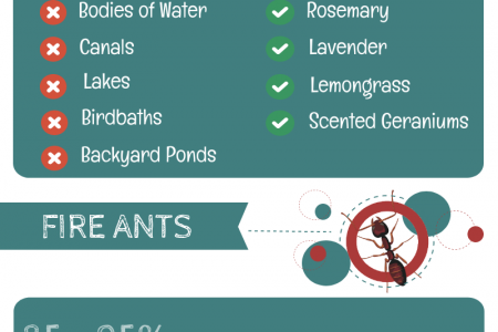 How To Protect Your Home From Pests Infographic