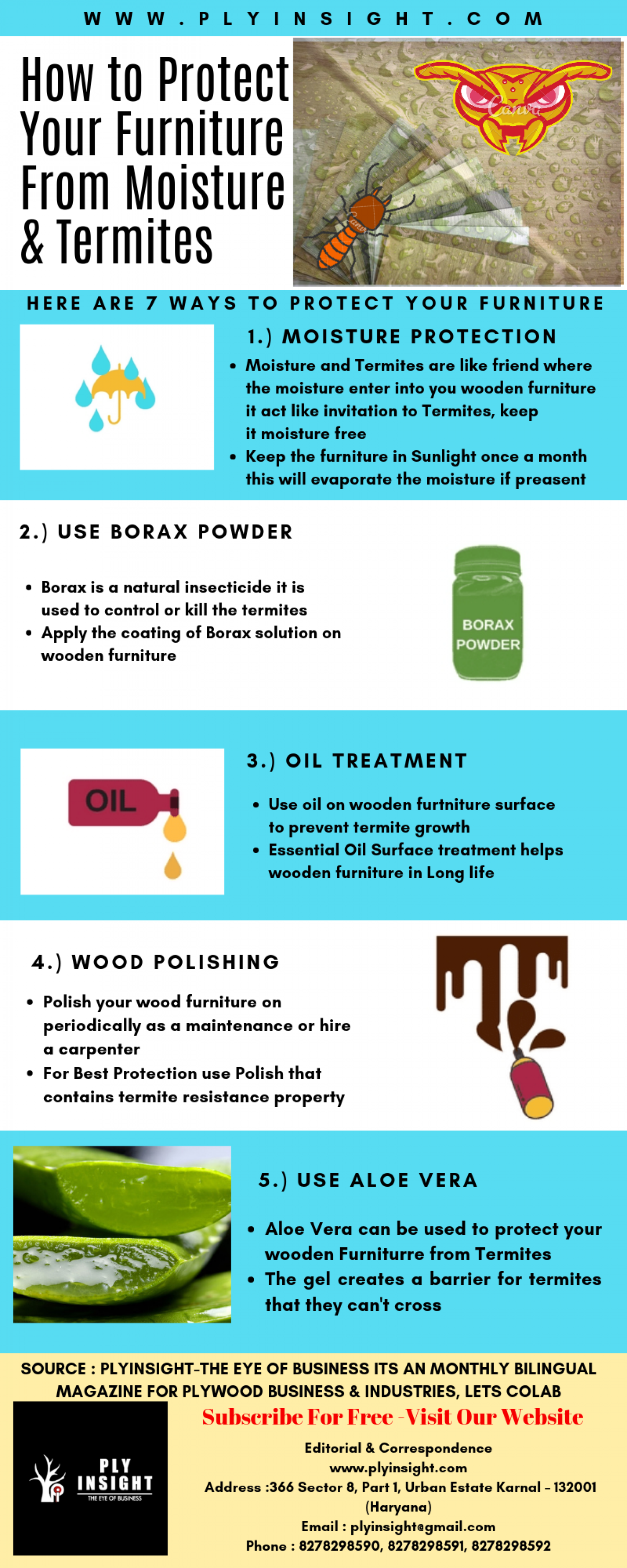 How to protect your wooden furniture from Termites & Moisture  Infographic