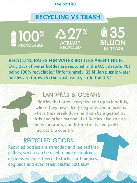 How To Reduce Your Bottled Water Footprint Infographic