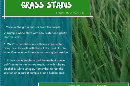 How to remove grass stains from your carpet Infographic