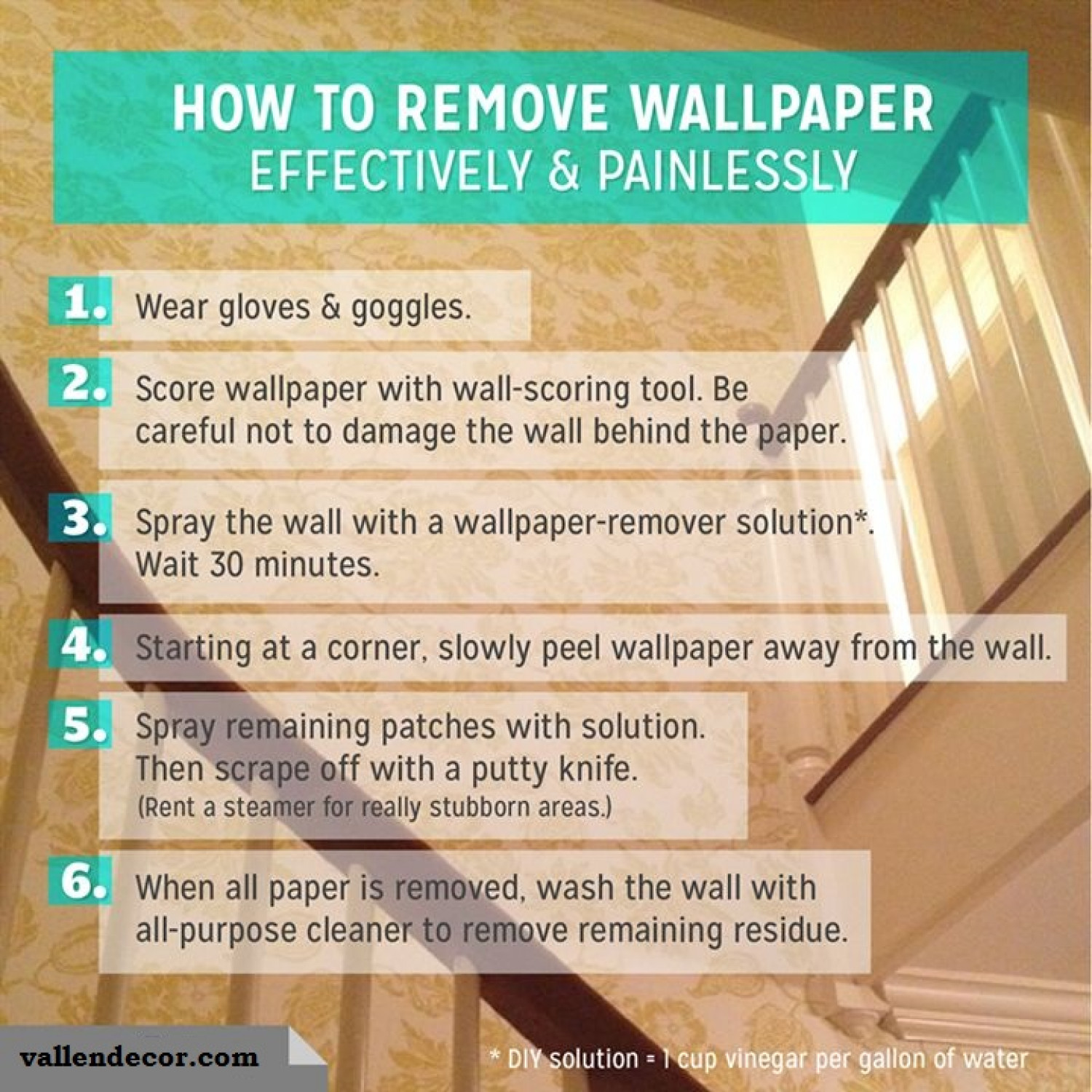 How To Remove The Wallpaper Effectively And Painlessly Infographic