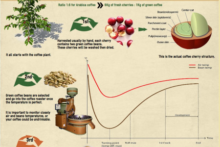 How To Roast Coffee Beans Infographic