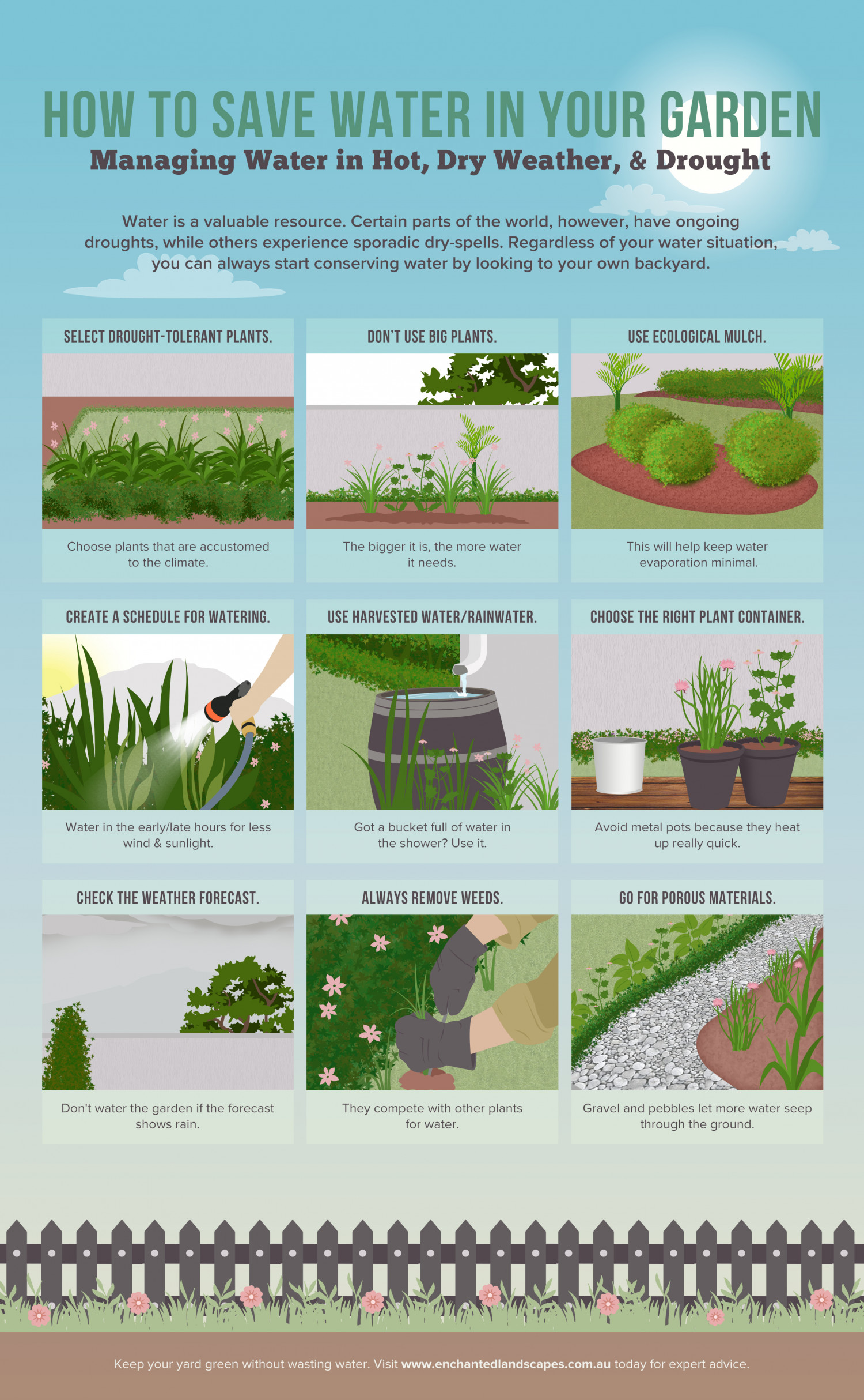 How to Save Water in Your Garden Infographic