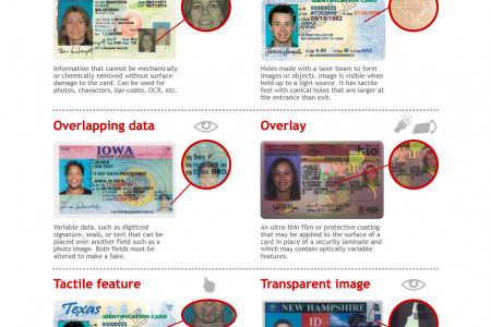How to Spot a Fake ID Infographic