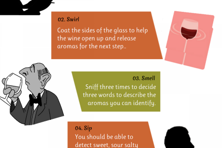 How to Taste Wine Like an Expert Infographic