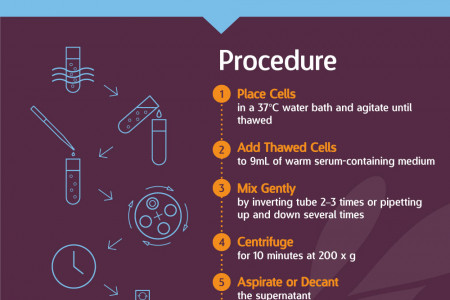How to Thaw Immune Cells for Research Infographic