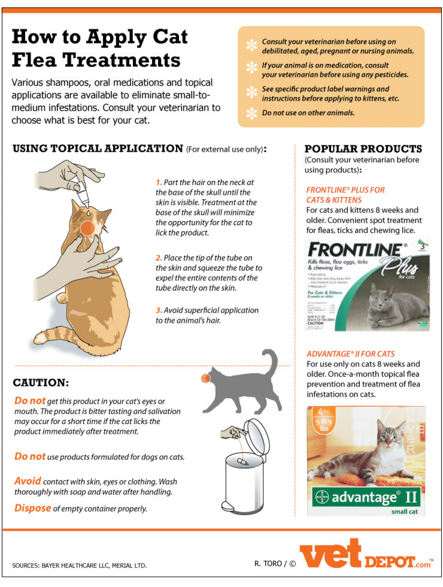 At What Age Can Cats Get Flea Treatment