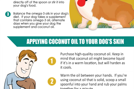How to Use Coconut Oil for Flea and Skin Treatment on Dogs Infographic
