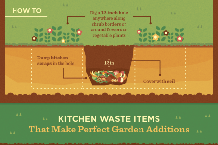 How to Use Food Scraps in the Garden Without a Compost Bin Infographic