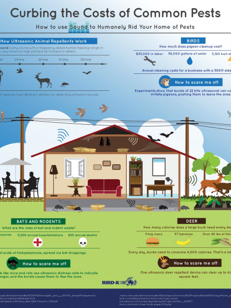 How To Use Sound to Humanely Rid Your Home of Pests Infographic
