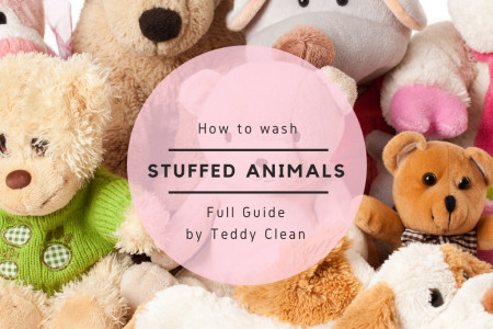 How to wash stuffed animals  Infographic