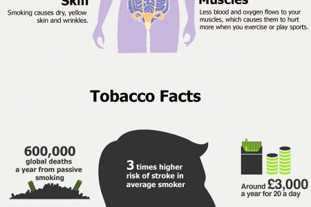 How Tobacco Causes Harm? Infographic