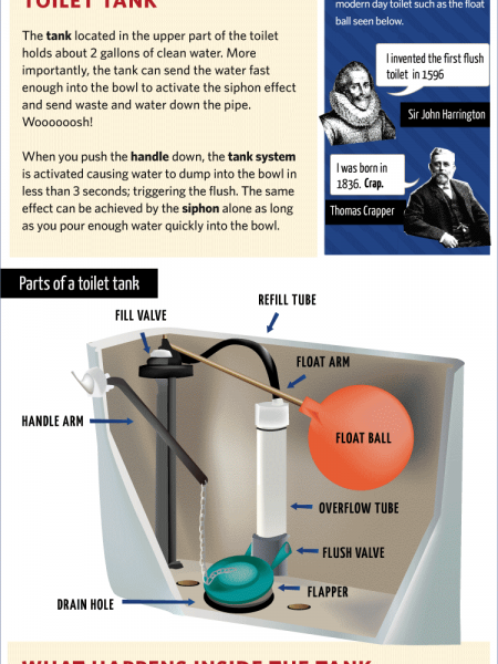 How Toilet Flushing Works Infographic