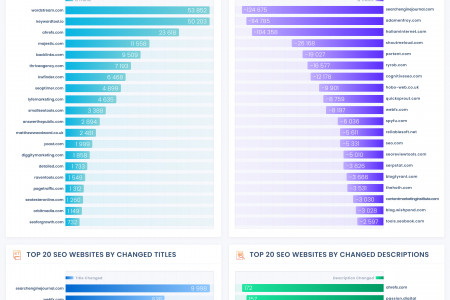 How Top SEO Companies Optimize Their Websites Infographic